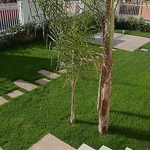 3 ristrutturazione giardino privato